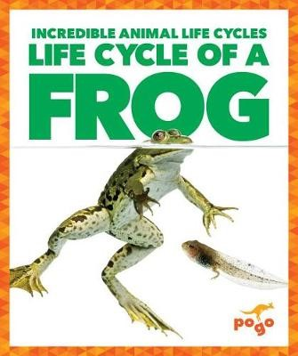 Life Cycle of a Frog - pr_342884