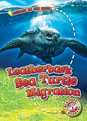 Leatherback Sea Turtle Migration - pr_210562