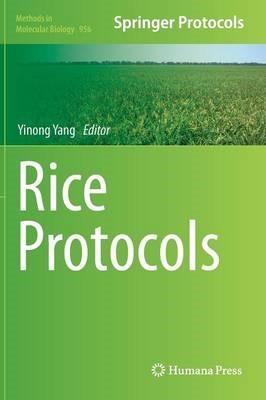 Rice Protocols - pr_1794293