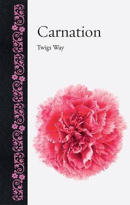 Carnation -