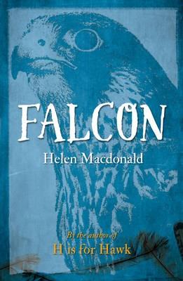 Falcon -