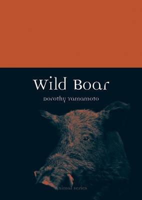 Wild Boar -