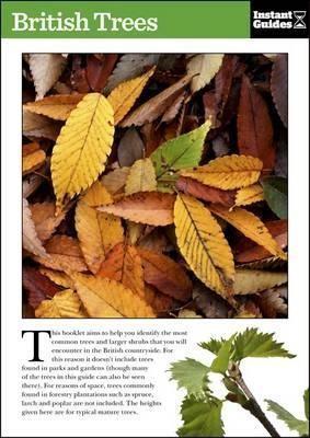 British Trees -