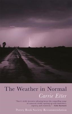 The Weather in Normal -