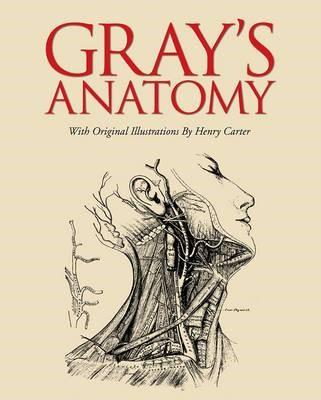 Gray's Anatomy -