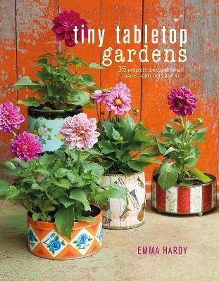 Tiny Tabletop Gardens -