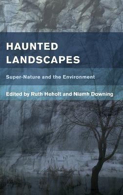 Haunted Landscapes - pr_340816