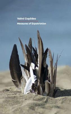 Measures of Expatriation -