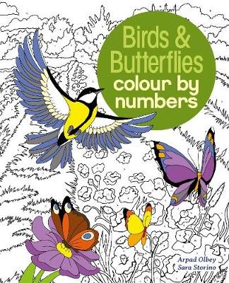 Birds & Butterflies Colour by Numbers -