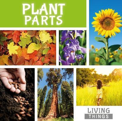 Plant Parts - pr_208909
