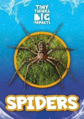 Spiders - pr_246484