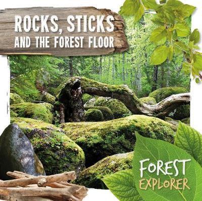 Rocks, Sticks & the Forest Floor -