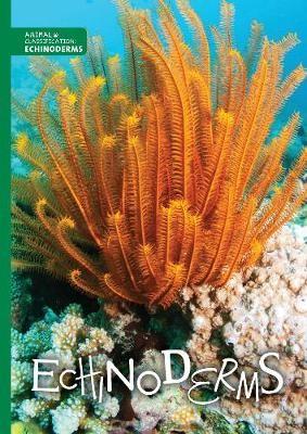 Echinoderms -