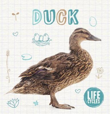 Duck - pr_114924