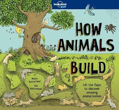How Animals Build - pr_118997