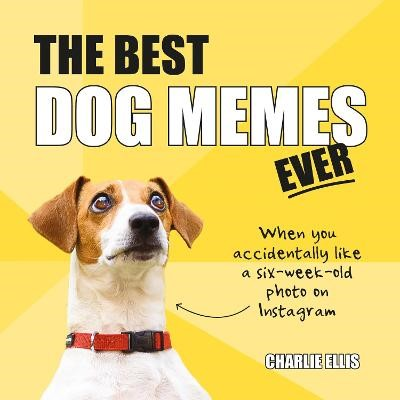 The Best Dog Memes Ever -