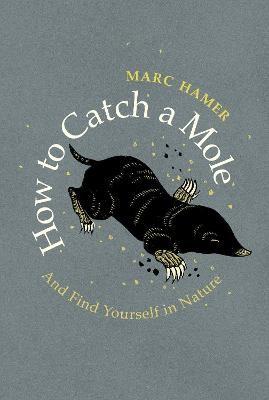 How to Catch a Mole - pr_119683