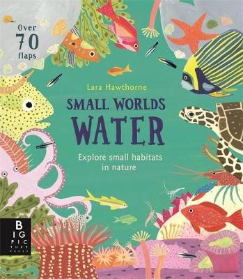 Small Worlds: Water -