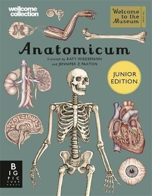 Anatomicum Junior - pr_1807423