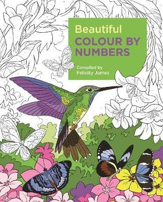 Beautiful Colour by Numbers - pr_237641