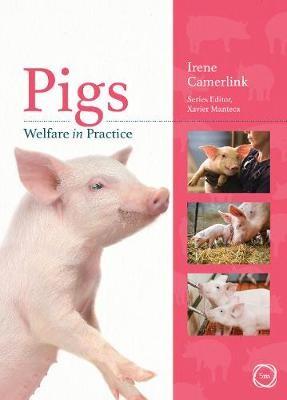 Pigs Welfare in Practice - pr_1754198