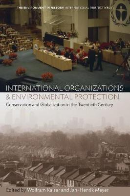 International Organizations and Environmental Protection - pr_341246