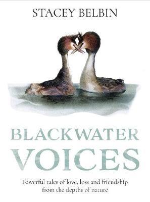 Blackwater Voices - pr_1734307