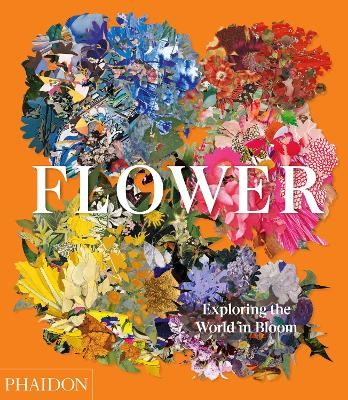 Flower: Exploring the World in Bloom -