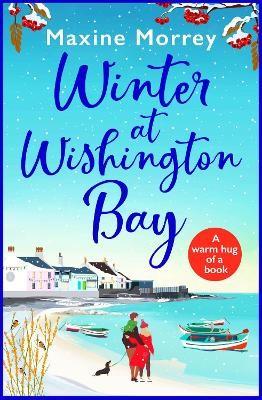 Winter at Wishington Bay -