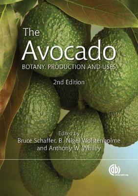 The Avocado -