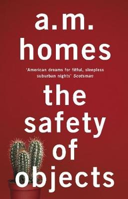 The Safety Of Objects -