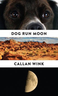 Dog Run Moon -