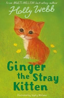 Ginger the Stray Kitten - pr_220761