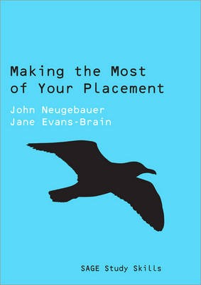 Making the Most of Your Placement -