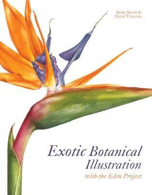 Exotic Botanical Illustration - pr_74817