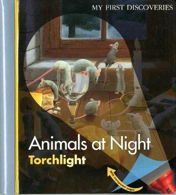 Animals at Night - pr_20052