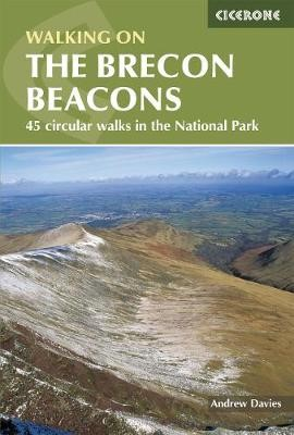 Walking on the Brecon Beacons - pr_237818