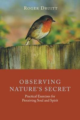 Observing Nature's Secret - pr_413298