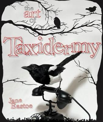 The Art of Taxidermy -