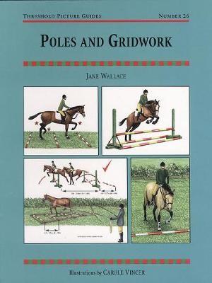 Poles and Gridwork - pr_313013