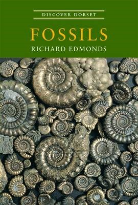 Discover Dorset Fossils -