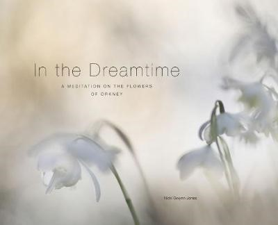 In the Dreamtime -
