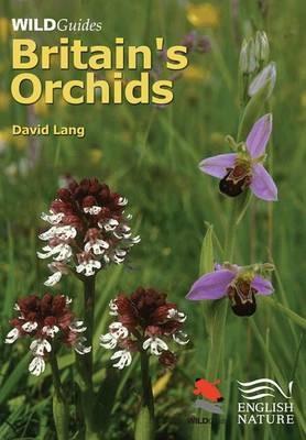 Britain`s Orchids - pr_284814