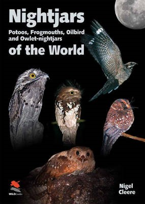 Nightjars, Potoos, Frogmouths, Oilbird, and Owlet-nightjars of the World - pr_86753