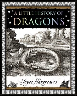 A Little History of Dragons - pr_17057