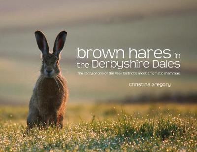 Brown Hares in the Derbyshire Dales - pr_204379