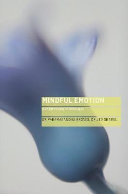 Mindful Emotion - pr_15992