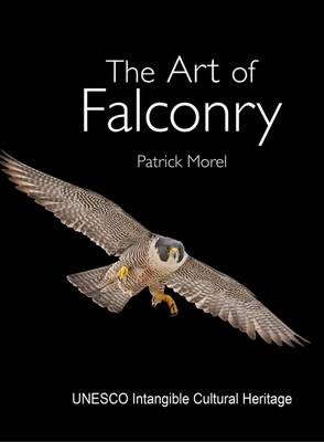 The Art of Falconry -