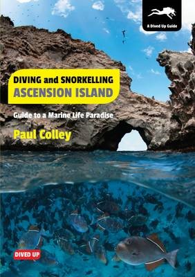 Diving and Snorkelling Ascension Island - pr_232502