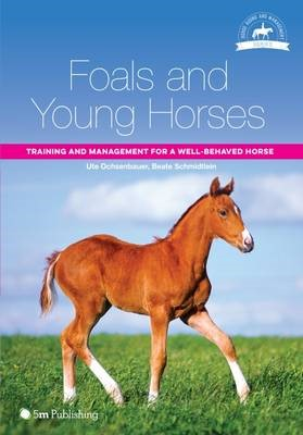 Foals and Young Horses -